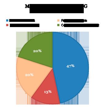 MSCFIN Career Prospects
